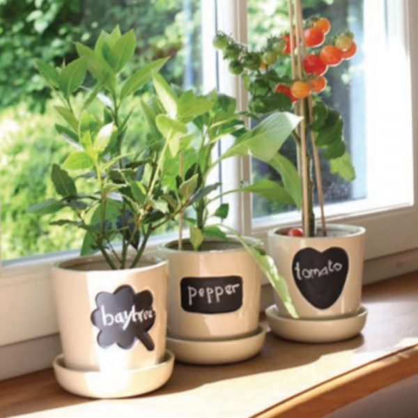 Pack of 3 Flower Pots with Chalkboard Message Panels and Chalk