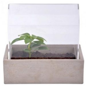 Small Tabletop Greenhouse Planter with Concrete Base