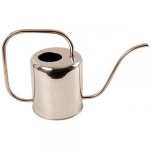 Modern 1.5L Stainless Steel Watering Can
