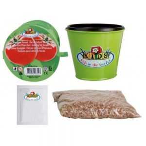 Children's Tomato Grow Kit